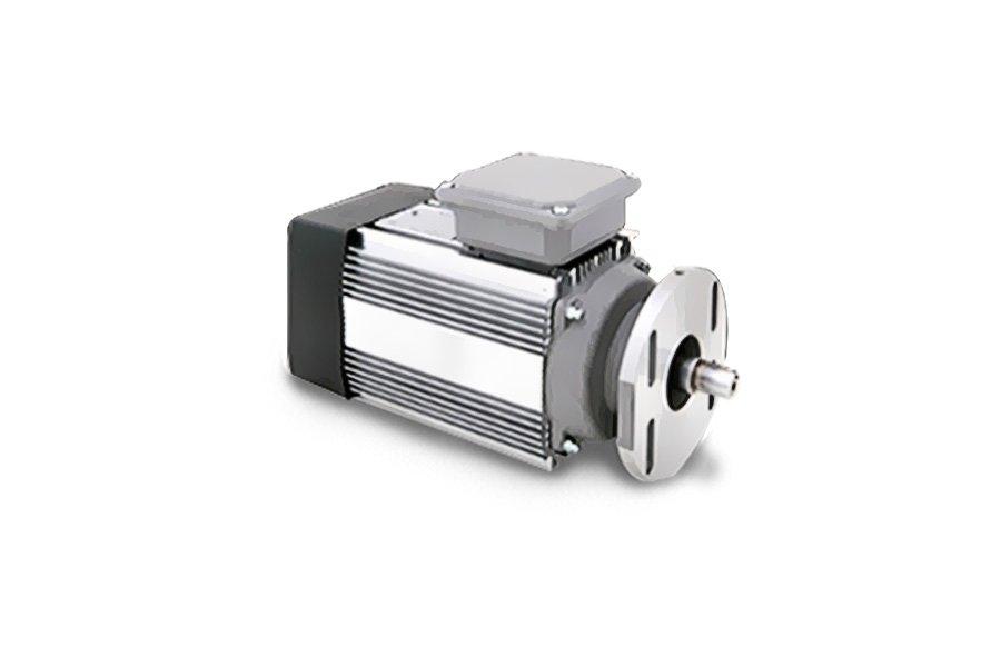 CEG motores Baixo Veio